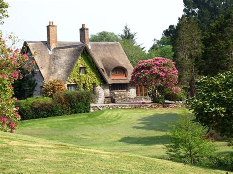 a thatched roofed cottage house