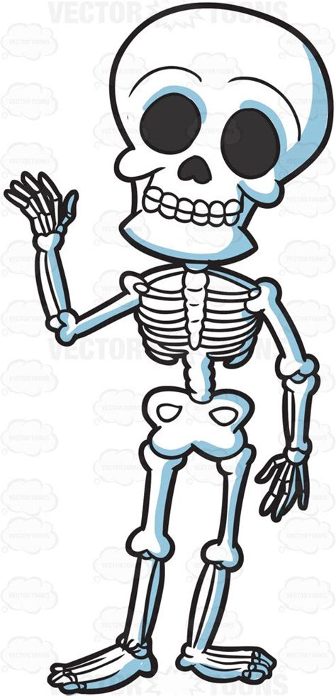 skeleton clipart a friendly skeleton clipart vector