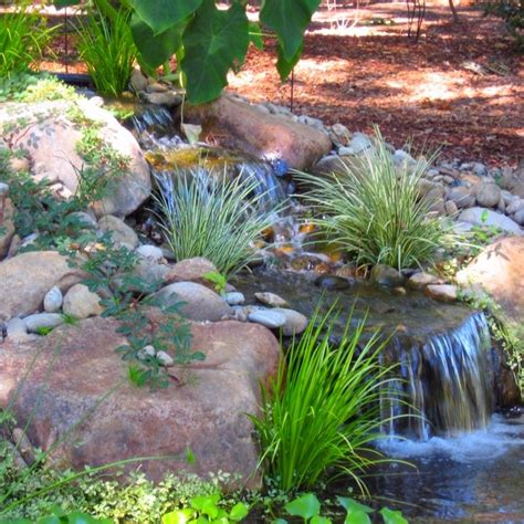 backyard pond maintenance 36 best images about nw landscaping on pinterest gardens