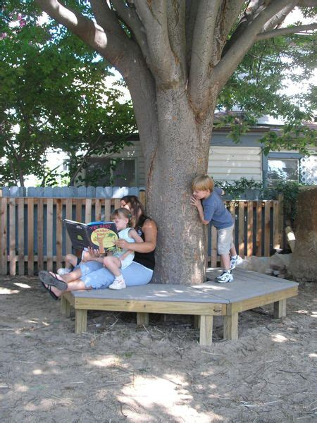 bench tree group 17 best images about outdoors patio pergola on