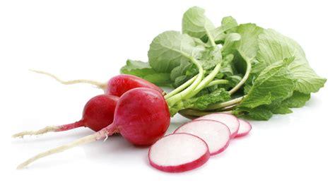 come cucinare i ravanelli ricette con le foglie dei ravanelli il pesto e la