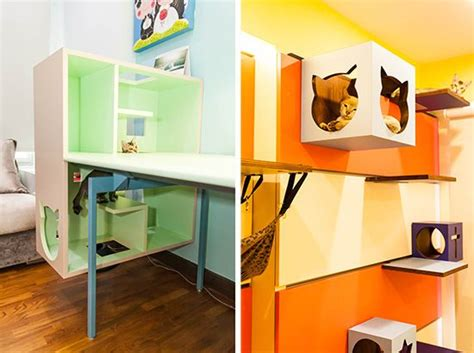 cat friendly home design the 25 best cat friendly home ideas on pinterest cat