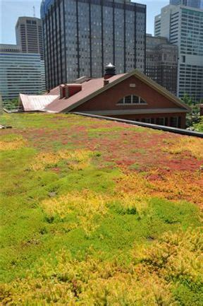 norquist green roof friends center pennsylvania green roof by