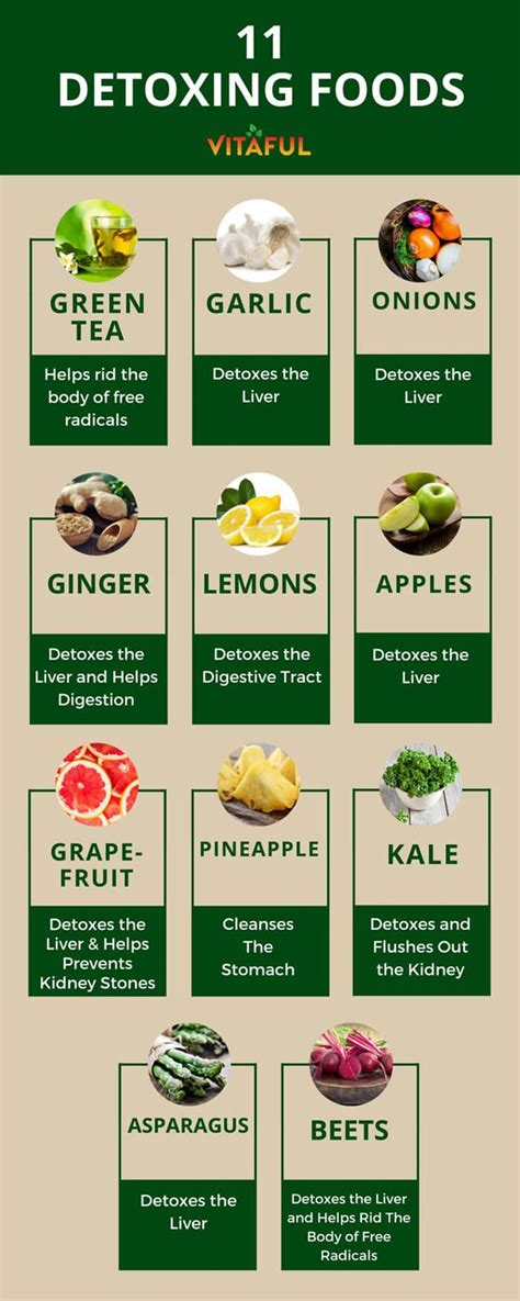 Detox Foods by Detox Vs Cleanse Their Differences And Benefits A