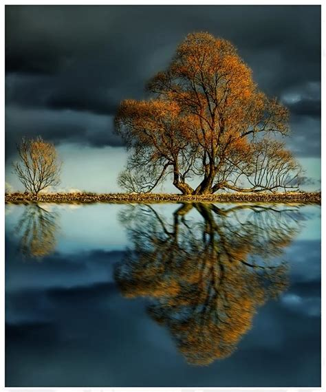 amazing nature pictures 9250 the wondrous pics best of nature photography