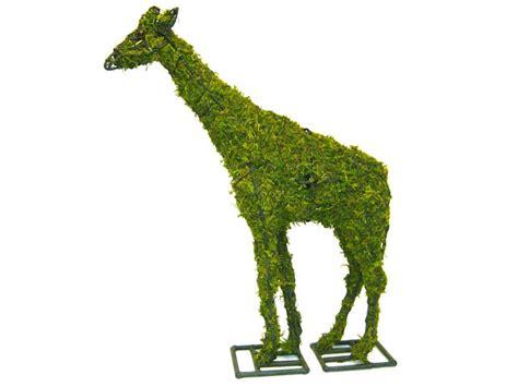 animal topiary frame giraffe garden topiary frame