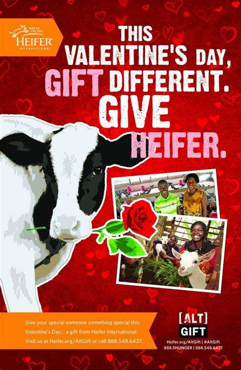 heifer charity presents image search results