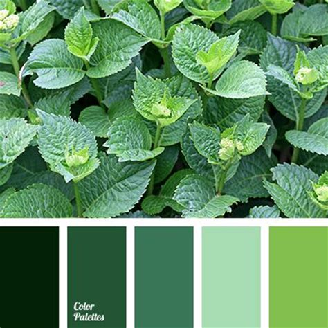 organic colours incorporate the green shades of grass 419 best images about painting leaves grass on pinterest