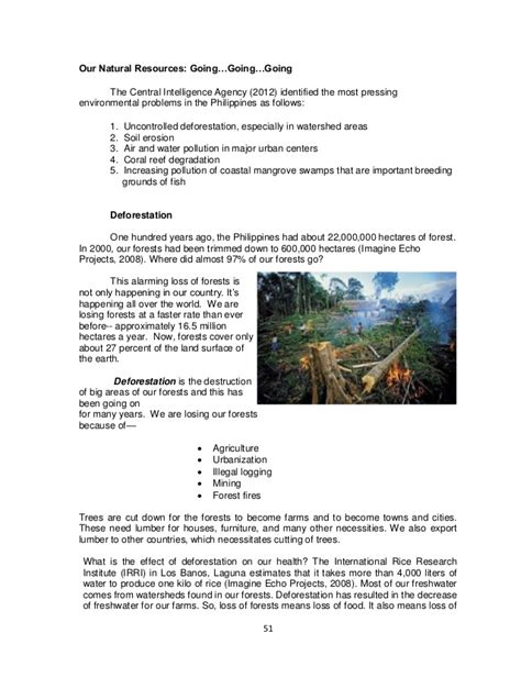 Environment In The Philippines Essay by Essay About Environmental Problems In The Philippines Pollutionvideohive Web Fc2