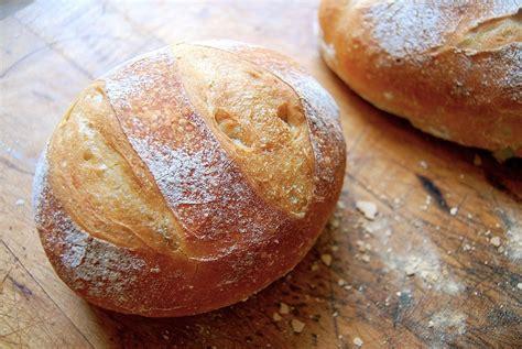 bread of no knead crusty white bread flourish king arthur flour