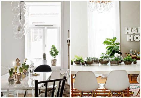 decorar rincon con plantas 50 im 225 genes decoraci 243 n de interior con plantas y jardines