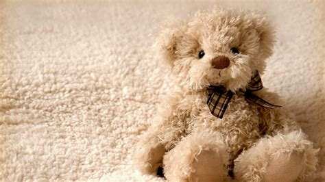 wallpaper desktop teddy bear teddy bear wallpaper pc computer 11155 wallpaper cool
