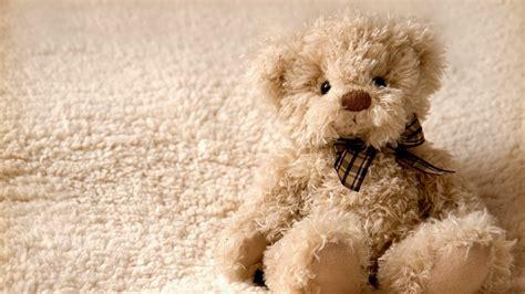 top 20 cute teddy bear wallpaper for happy teddy day 2015