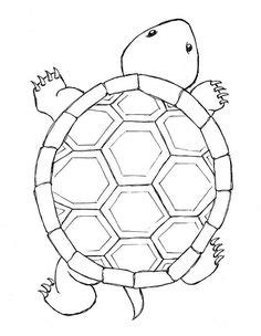 turtle pattern drawing 1000 images about turtle medicine on pinterest turtles