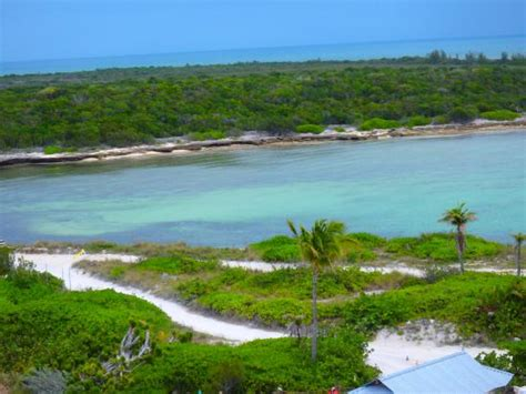 Best part of the day   Picture of Castaway Cay, Sandy