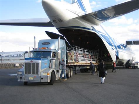 world cargo logistics operates as a global provider of
