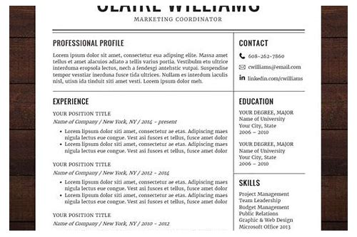 download professional cv template word