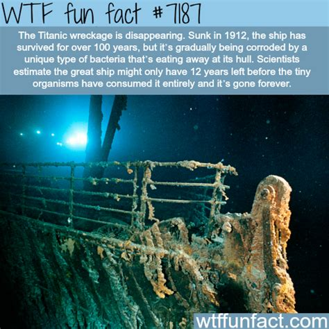 titanic biography facts titanic wreckage will disapeare by 2030 wtf fun fact