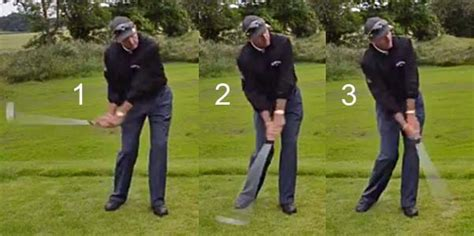 swing link david leadbetter critical review