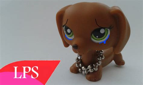 lps boy dogs lps boy dogs images