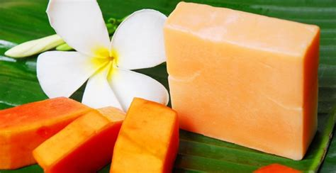 Sabun Pepaya Sabun Pepaya kulit putih dan sehat alami dengan sabun pepaya cinta