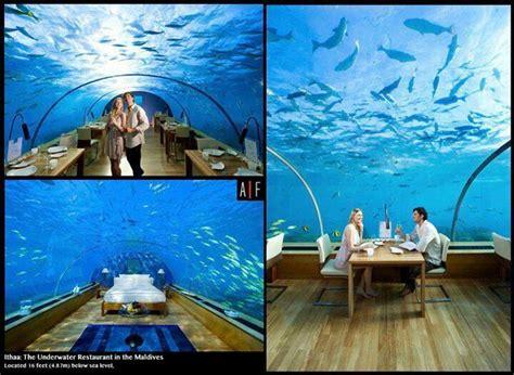 ithaa underwater restaurant maldives favorite places spaces pinterest underwater