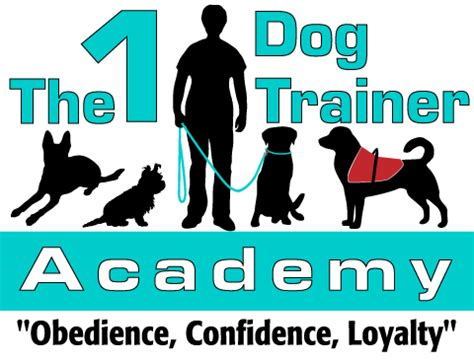 the puppy academy the 1 trainer academy in deltona fl