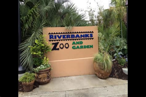 Riverbanks Zoo In Columbia Sc Inside Tips And Video Lights At The Zoo Columbia Sc