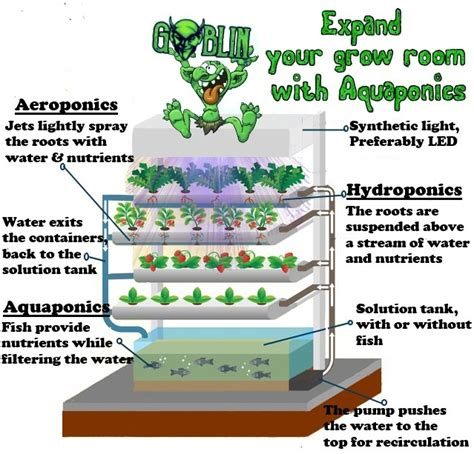 hydroponics articles stories news agritechtomorrow