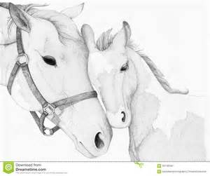 horse mother foal drawing stock illustration image 56742540
