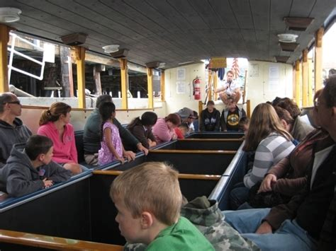 glass bottom boat tours san diego glass bottom boat tours avalon ca kid friendly