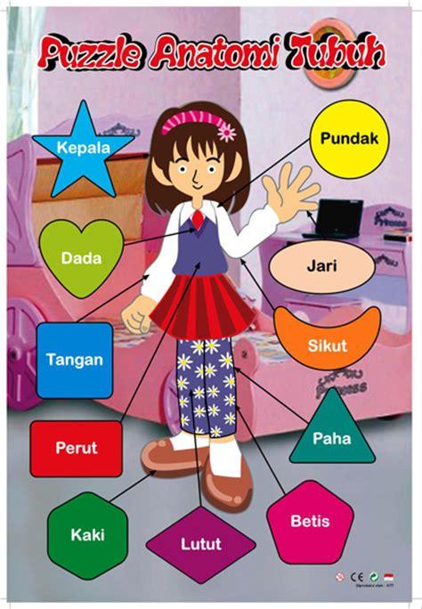 Mainan Edukatif Edukasi Anak Puzzle Stiker Hewan Ternak Peternakan puzzle stiker anatomi tubuh perempuan mainan kayu