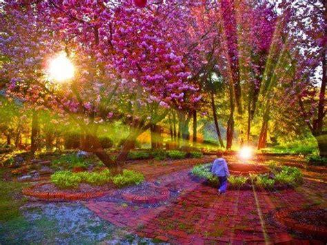 soul pursuits gardening   fairies part