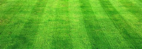 As Ground by Sportsground Cricket Ground In Delhi Ncr Gurgaon Booking