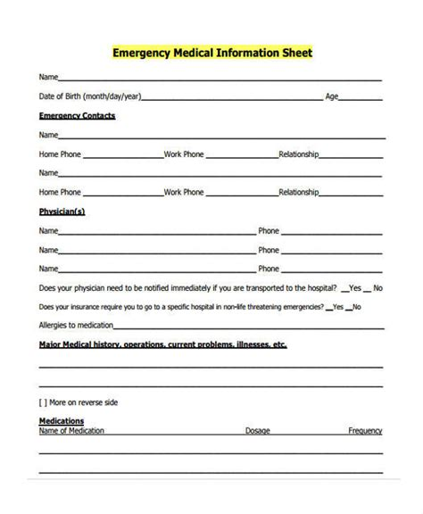 45 information sheet sles
