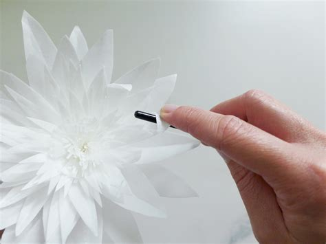 How To Make Wafer Paper Flowers - new wafer paper flower tutorial and future goodies