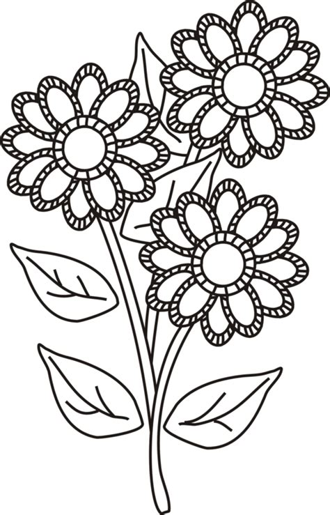 pretty flowers to draw coloring pages coloring pages