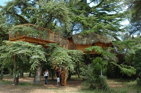 chambre d hotes montpellier et alentours les cabanes de l arbousier cabane crecerelle chambre d h 244 tes tourisme montpellier