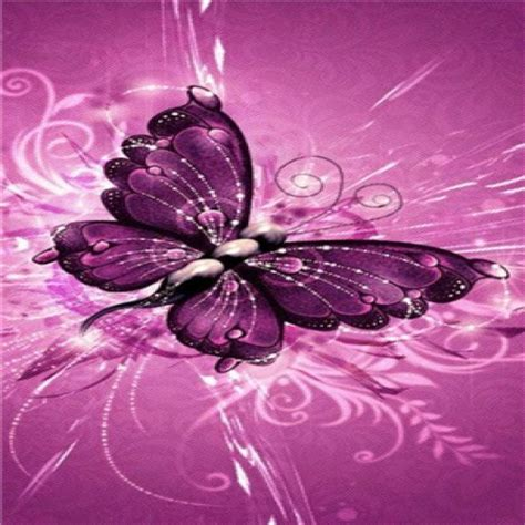Imagenes Mariposas Whatsapp | imagenes fondo whatsapp mariposa lila imagenes bonitas