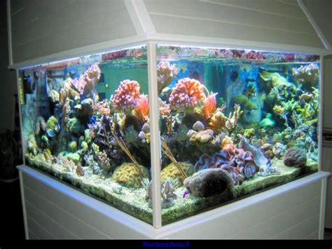 Modèle aquarium eau de mer prix