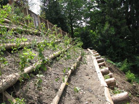 come impostare un giardino idee per realizzare zone in pendenza forum giardinaggio