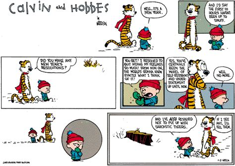 calvin and hobbes new years resolution calvin hobbes resolutions 7 on target