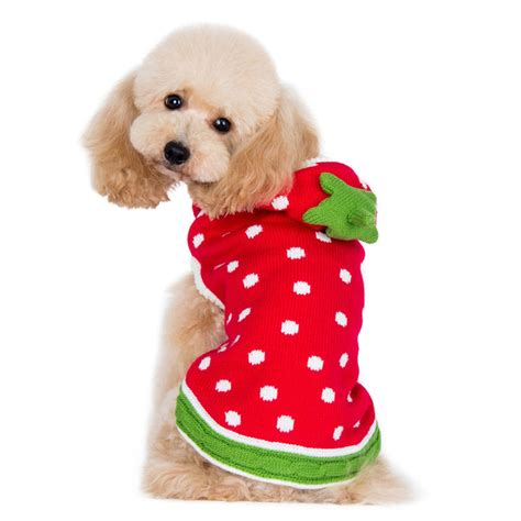 dogs and strawberries strawberry sweater