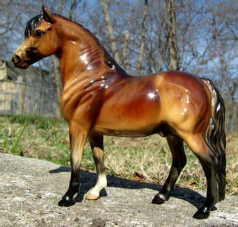 sport ponies wind river ranch
