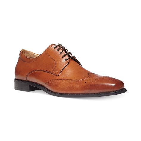 steve madden dowser dress lace up oxfords in brown for