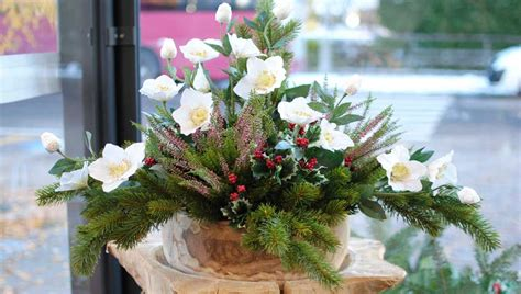 composizioni di fiori natalizi composizioni fiori natalizi 28 images composizioni