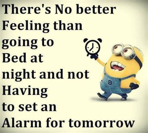 100+ minion quotes images : funny minion pictures with
