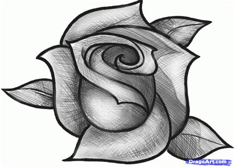 sket tattoo mawar how to sketch a rose step by step sketch drawing