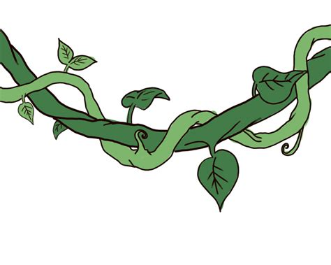 Drawing Vines by How To Draw A Jungle Vine 7 Steps With Pictures Wikihow