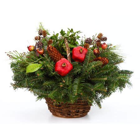 walmart fresh christmas trees real trees delivered fresh live fraser fir decorated plant in basket